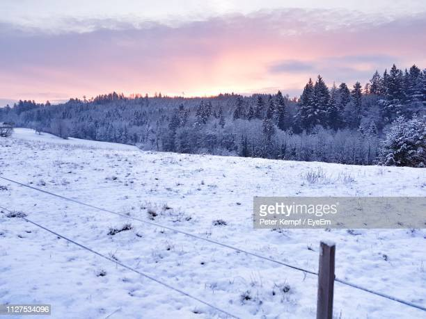snow covered land against sky during sunset - peter snow stock pictures, royalty-free photos & images