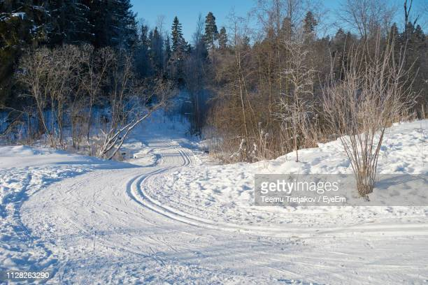 snow covered land by trees on field during winter - teemu tretjakov stock pictures, royalty-free photos & images