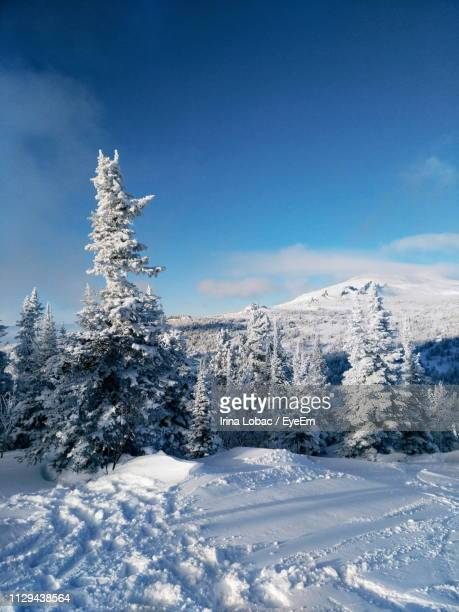 snow covered landscape against blue sky - deep snow stock pictures, royalty-free photos & images