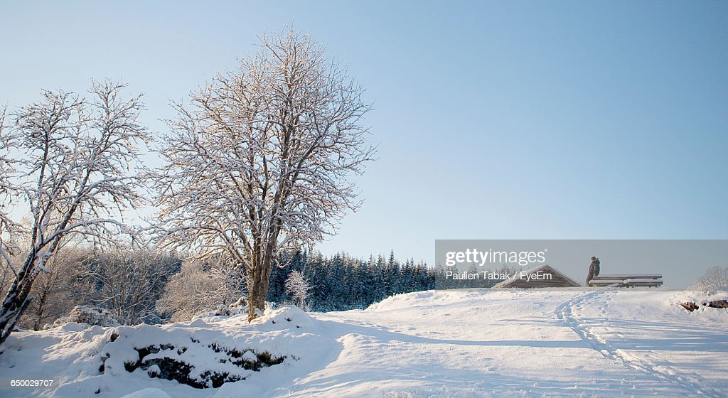 Snow Covered Landscape Against Clear Sky : Stockfoto