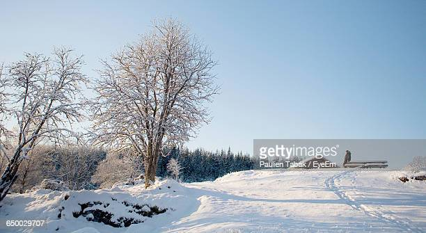 snow covered landscape against clear sky - paulien tabak stock pictures, royalty-free photos & images