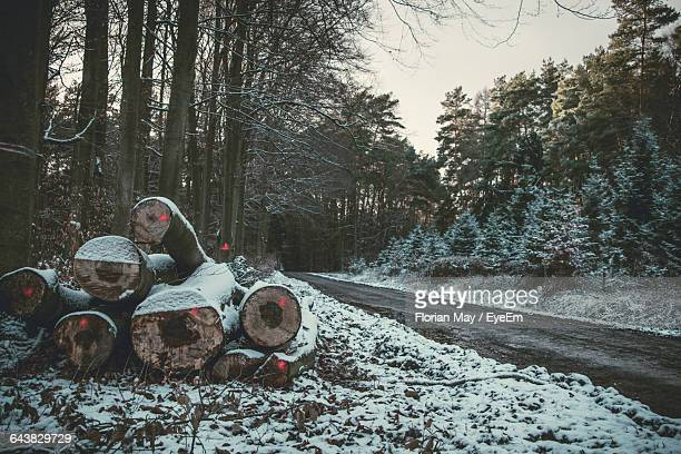 Snow Covered Logs On Field By Empty Road In Forest Against Sky