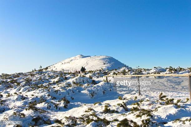 snow covered mountain against blue sky - babia góra mountain stock pictures, royalty-free photos & images