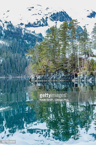 snow covered mountains and shoreline with trees reflected in the waters of harrison lagoon, chugach national forest - chugach mountains stock pictures, royalty-free photos & images