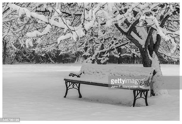 snow covered park bench - black and white instant print stock pictures, royalty-free photos & images