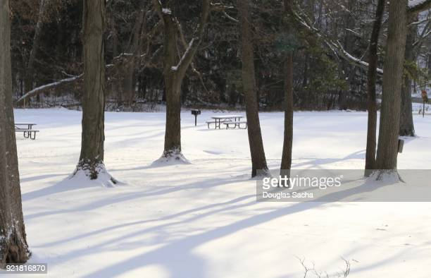 snow covered picnic area - snow scene stock photos and pictures
