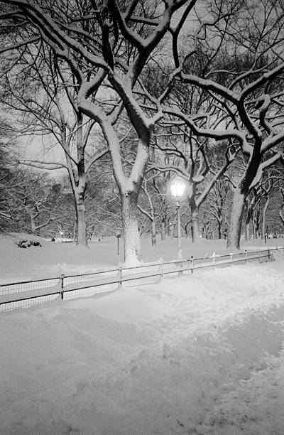Snow Covered Promenade, Central Park Wall Art