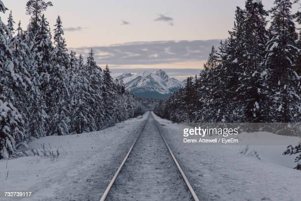Snow Covered Railroad Track Amidst Trees Against Sky