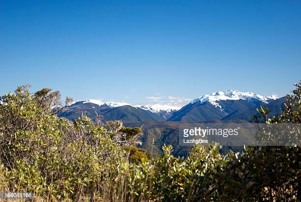 snow covered ranges, the kahurangi national park, new zealand - kahurangi national park bildbanksfoton och bilder