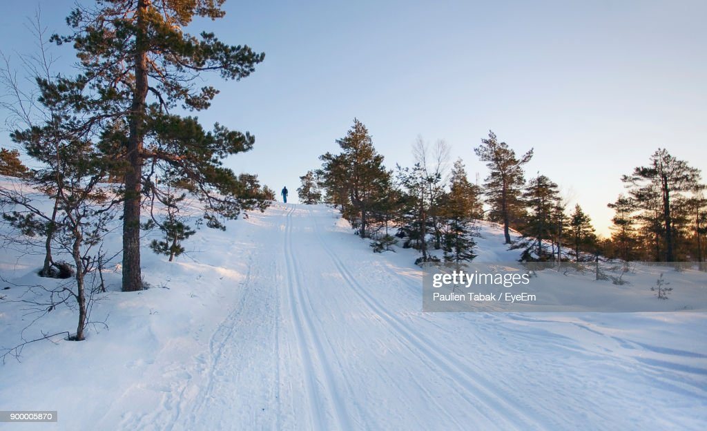Snow Covered Road Amidst Trees Against Clear Sky : Stockfoto