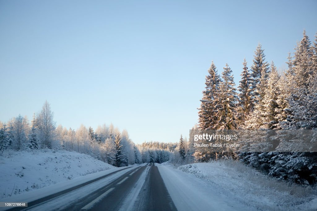 Snow Covered Road Amidst Trees Against Sky : Stock Photo