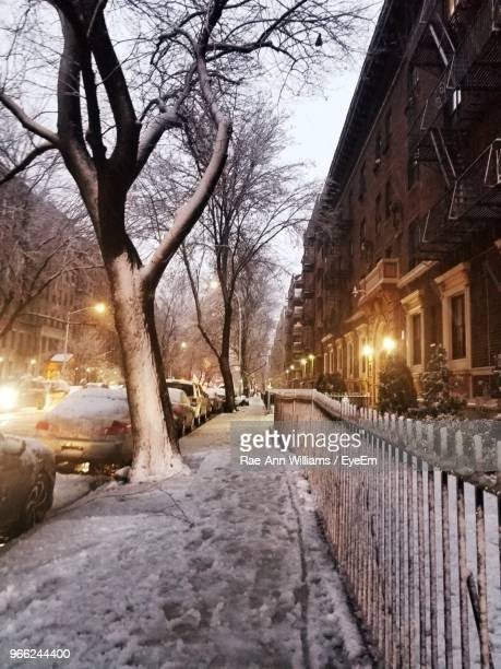 Snow Covered Road Amidst Trees And Buildings In City