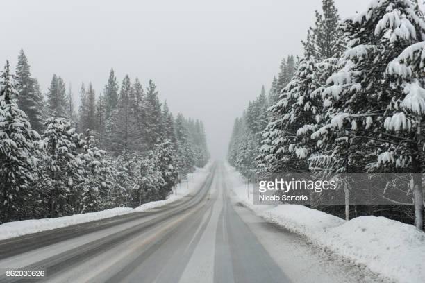 snow covered road leading into the mountain - descrição geral - fotografias e filmes do acervo