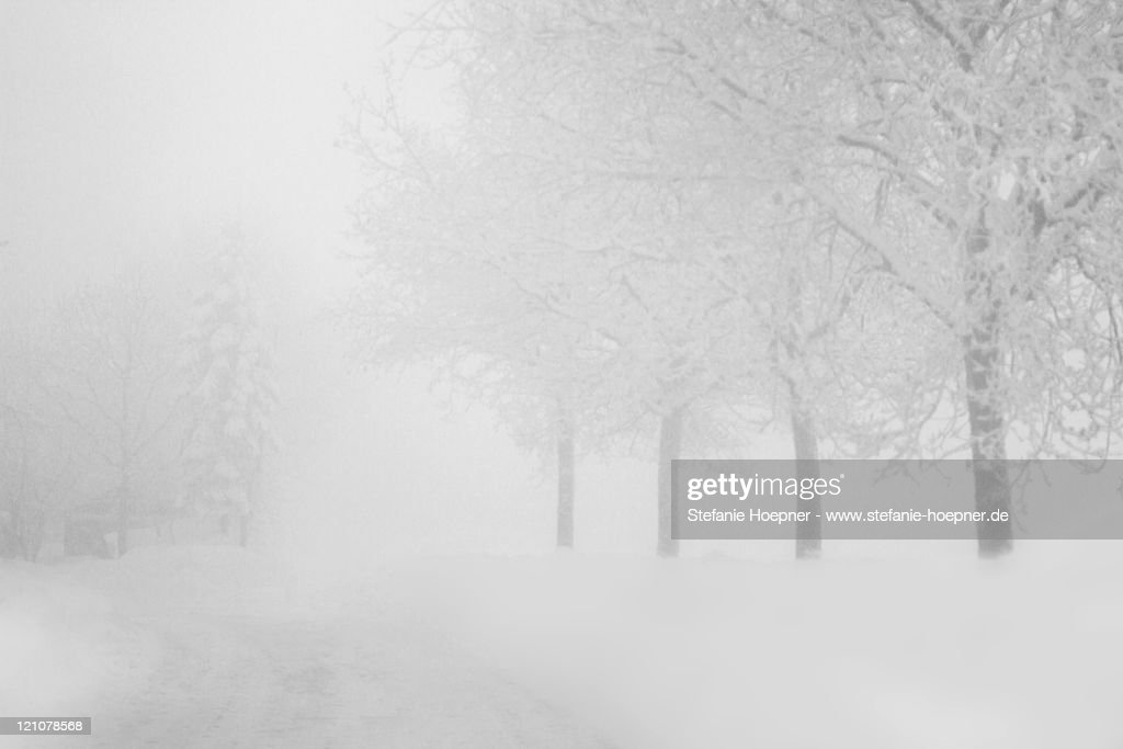 Snow covered road : Foto de stock