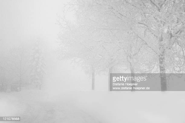 snow covered road - blizzard stock pictures, royalty-free photos & images