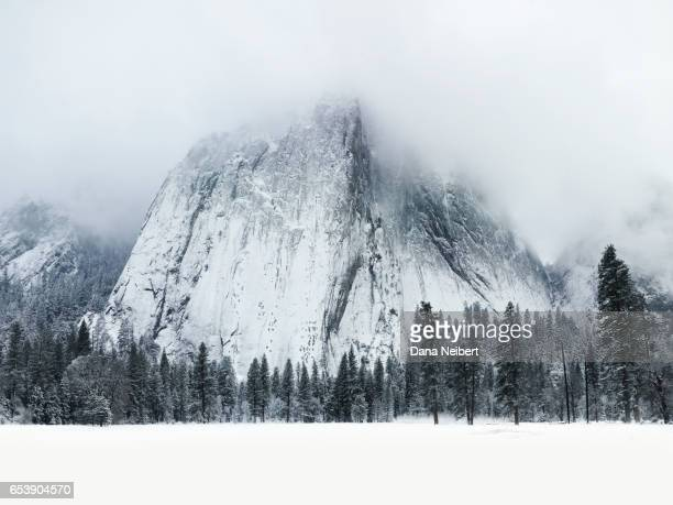 snow covered scene in yosemite national park - nature stock pictures, royalty-free photos & images