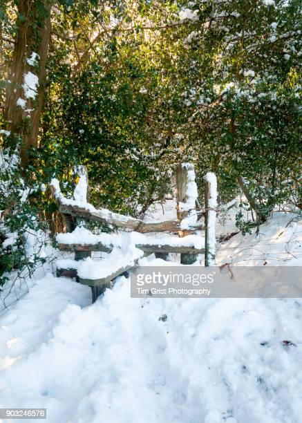 Snow Covered Stile in Woodland
