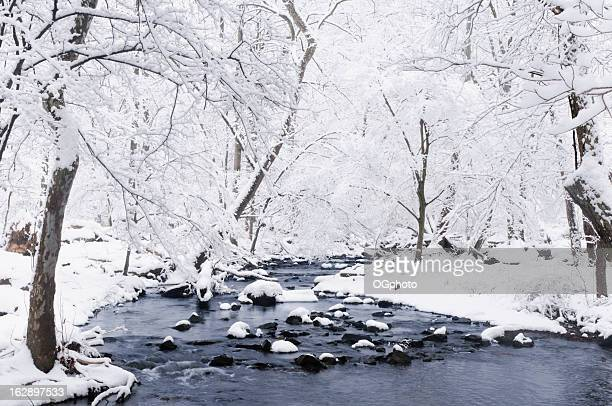 snow covered stream banks - ogphoto stock pictures, royalty-free photos & images