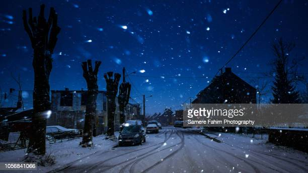 snow covered street amidst houses during snowfall - diepe sneeuw stockfoto's en -beelden
