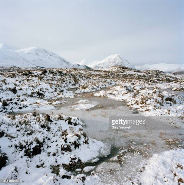 snow covered winter landscape - yeowell stock pictures, royalty-free photos & images