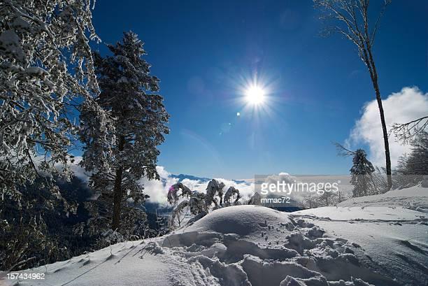 Schneebedeckte Winter-Landschaft mit Sonne