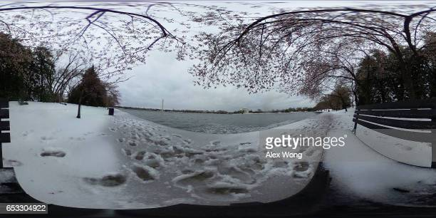 Snow covers a path as flower buds are seen on a cherry tree at Tidal Basin due to a snowstorm March 14 2017 in Washington DC The first major...
