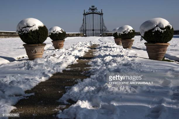 Snow covers plants by an alley leading to the castle of Chamerolles near Orleans some 120 km south of Paris on February 8 2018 / AFP PHOTO /...