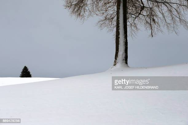 Snow covers the landscape near Lengenwang southern Germany on December 10 2017 / AFP PHOTO / dpa / KarlJosef Hildenbrand / Germany OUT