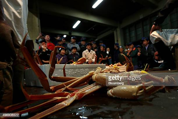 Snow crabs sit on a table as potential buyers engage in an auction at Mikuni Fishing Port in Mikuni Fukui Prefecture Japan on Friday Nov 6 2015 The...