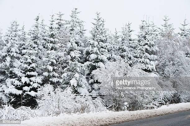 Snow Cumbria Nov 2016
