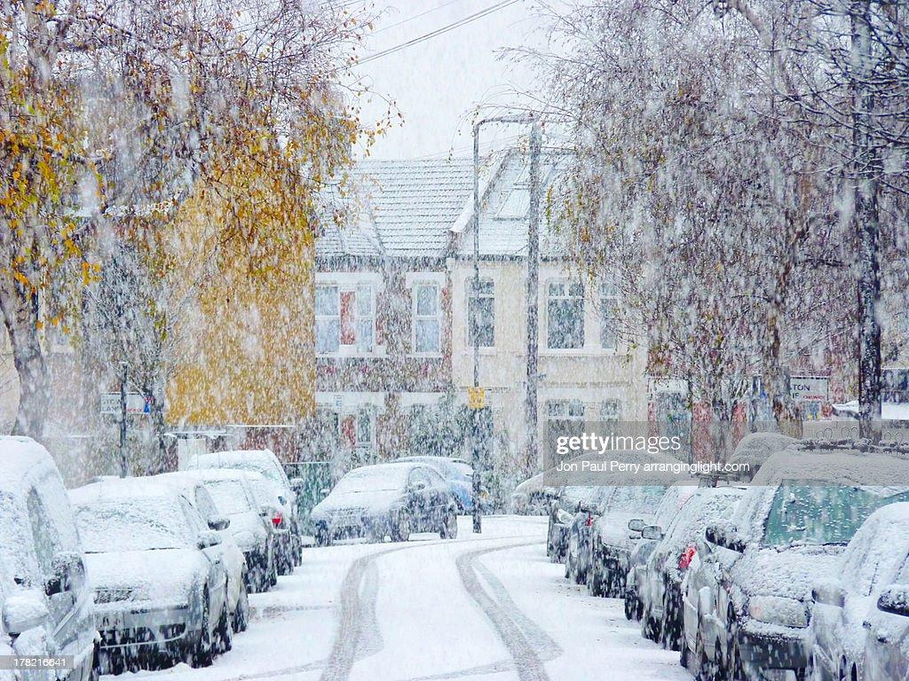 Snow fall : Stock Photo