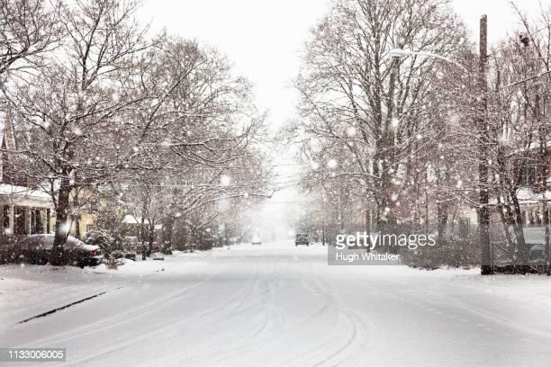 snow falling on suburban street - 深い雪 ストックフォトと画像