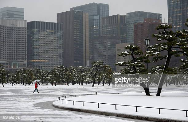 Snow falls as a man walks past commercial buildings near the Imperial Palace on January 18 2016 in Tokyo Japan The first heavy snowfall of the season...