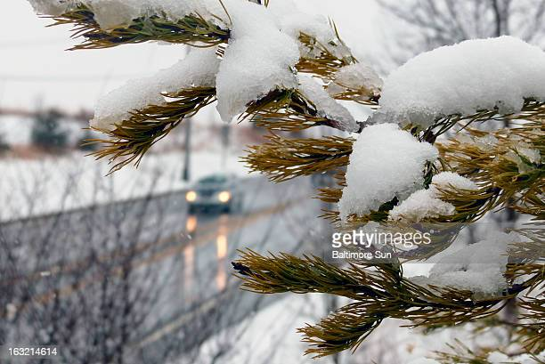 Snow falls near Md Route 97 in Olney Maryland Wednesday March 6 2013 Forecasts indicate heavy wet snow throughout the midAtlantic region compelling...