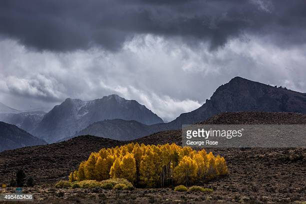 Snow flurries are viewed in the mountains along the June Lake Loop road on October 27 near Lee Vining California Despite four years of drought...