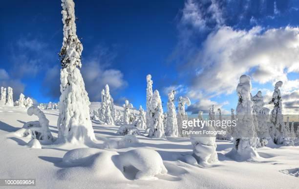 Snow giants