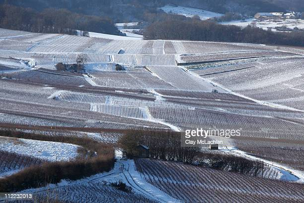 snow in champagne - campania stock pictures, royalty-free photos & images