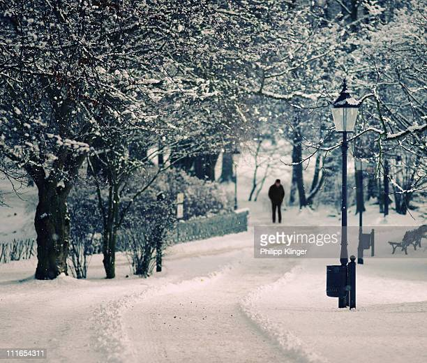 snow in the park - bad homburg stock pictures, royalty-free photos & images