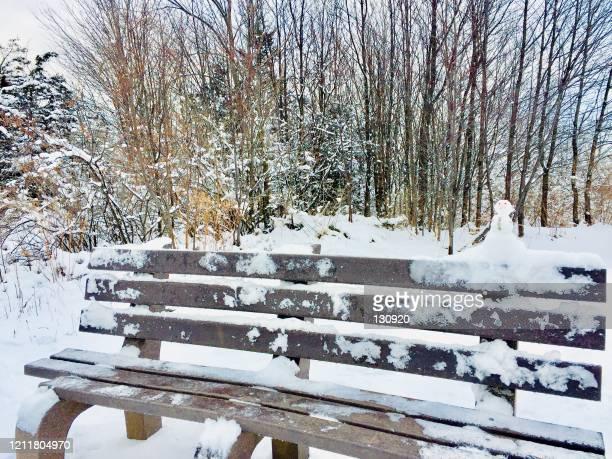snow man on the bench - グレイグース ストックフォトと画像