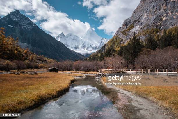 snow mountain and autumn leaf with river flow on the foreground in yading national park - shangri la stockfoto's en -beelden