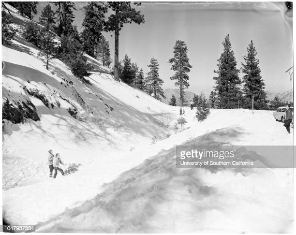 Snow on Angeles Crest Highway 23 February 1959 Bob Llama 16 yearsMary Ann WitherspoonDeonne VaughanNeva KesslerPhyllis BaliluttJeane DunnCaption slip...