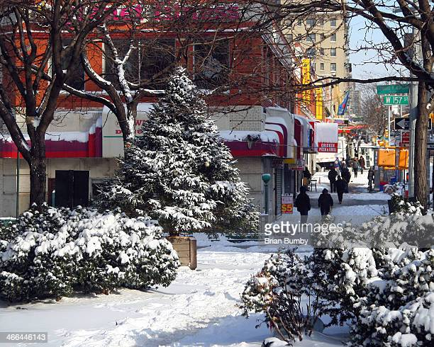 Snow on Broadway with Christmas Tree in Washington Heights, New York, NY