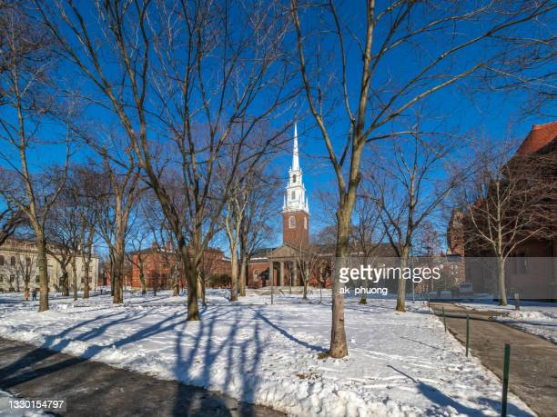 snow on harvard yard university in the winter - harvard yard stock pictures, royalty-free photos & images