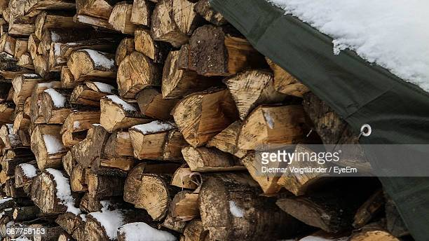 Snow On Stack Of Log