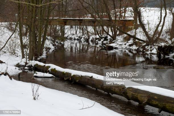 Snow on the banks of Angelica Creek at Angelica Creek Park in Reading, PA Monday afternoon December 21, 2020.