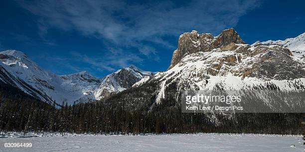 snow on the rugged canadian rocky mountains and a snow covered field, yoho national park - canadian rockies stock pictures, royalty-free photos & images