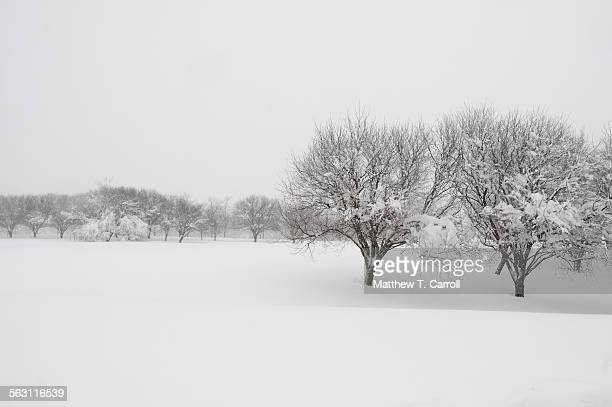 snow - correction fluid stock pictures, royalty-free photos & images
