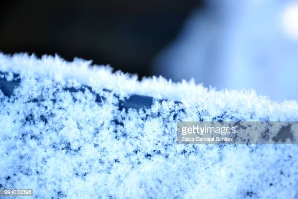 snow - carvajal stock photos and pictures