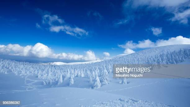 snow rime, zao, yamagata, japan - 東北地方 ストックフォトと画像