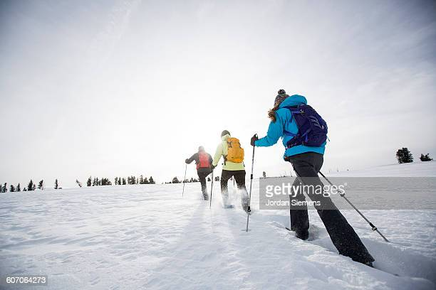 snow shoeing in the winter - ski pole stock pictures, royalty-free photos & images